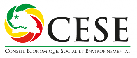 Economic Social and Environmental Council